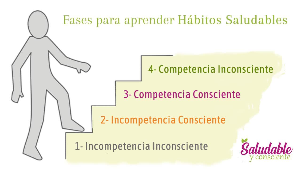 4 Fases para aprender hábitos saludables