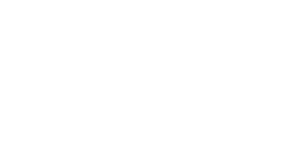 Logo Saludable y  Consciente